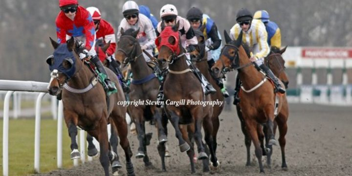 Multi Quest Wins at Kempton