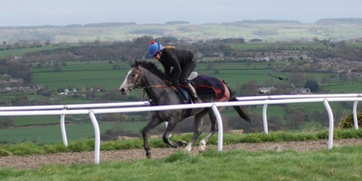Mickley Bred, Now Royal Ascot Is The Target ……