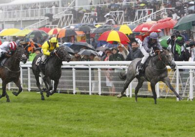 Havana Grey Wins Molcomb Stakes