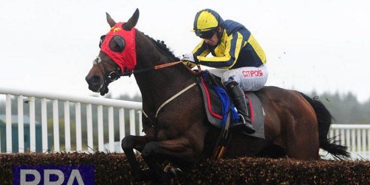 Mickley-Bred Gingili Wins at Exeter