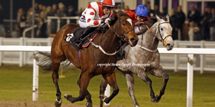Lady Willpower Dominates at Chelmsford