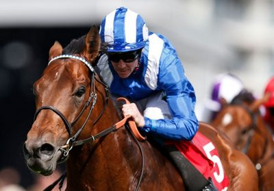 Massaat to Stand at Mickley Stud