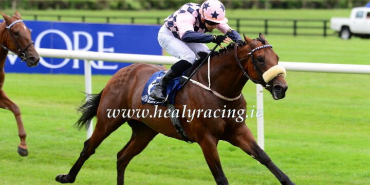 Mickley-Consigned Foal Turbo Spirit Wins at Naas
