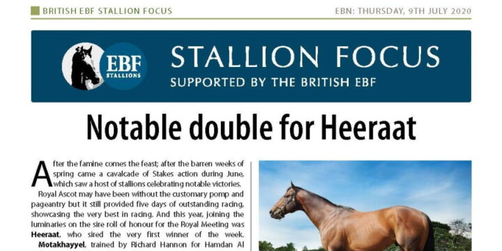 Heeraat Is EBF Stallion of The Month