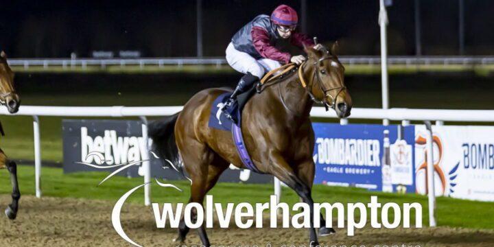 Debut Winner Follows Up At Wolves